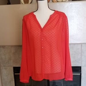 Lauren Conrad Sheer Blouse